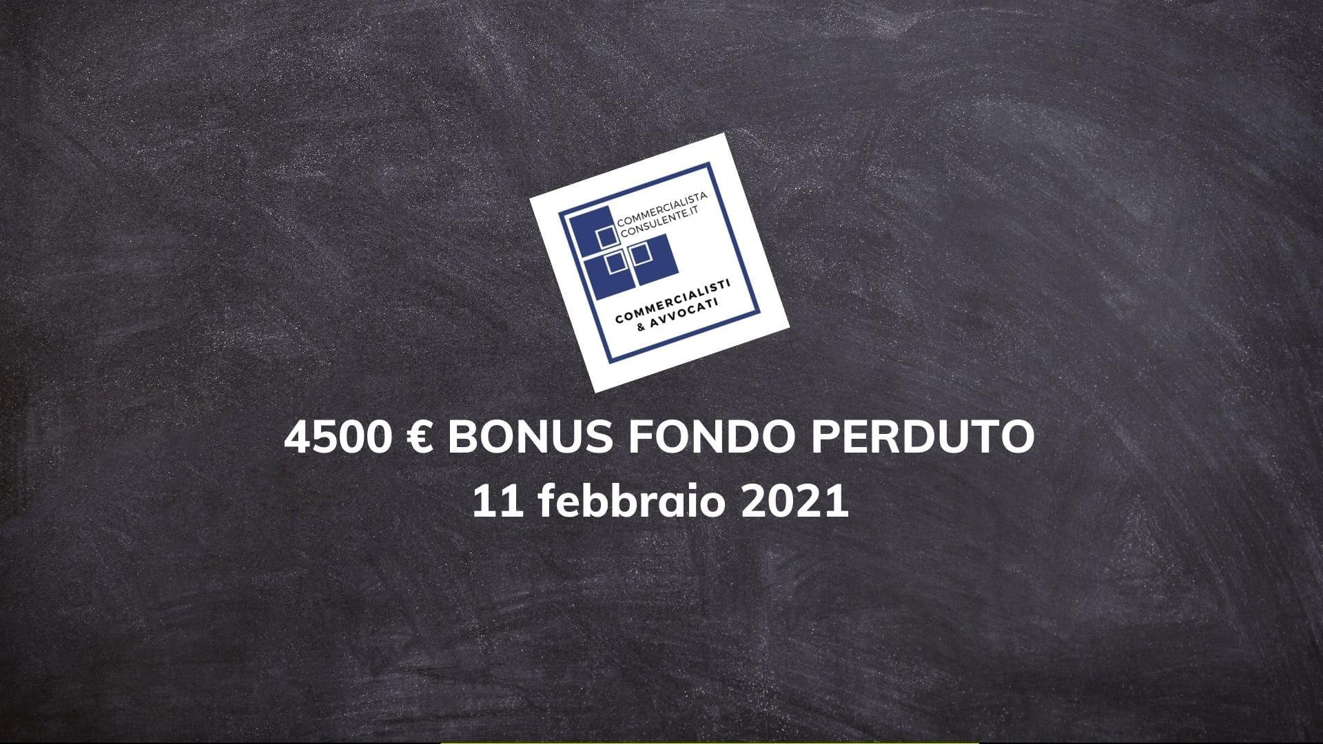 Bonus Partita Iva € 4500